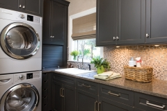 DuraSup_Laundry-room